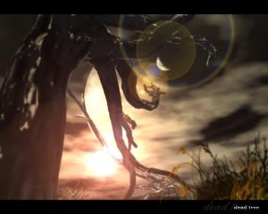 scenery_-_dead_tree