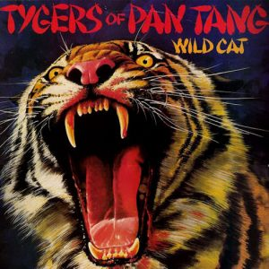 tigers-wild-cat