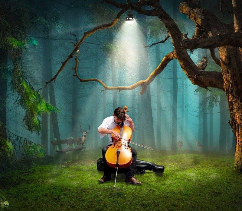 Συναυλία της Fantasy Symphony Orchestra