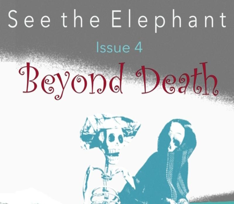 Διαβάσαμε το νέο τεύχος «See the Elephant»